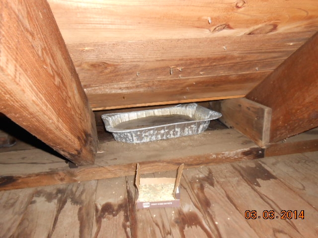 leak in attic